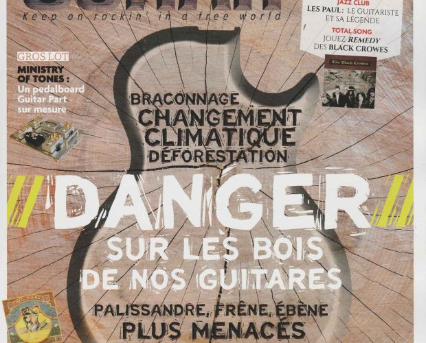 Roadrunner Guitars Interview Guitar Part Juillet 2020