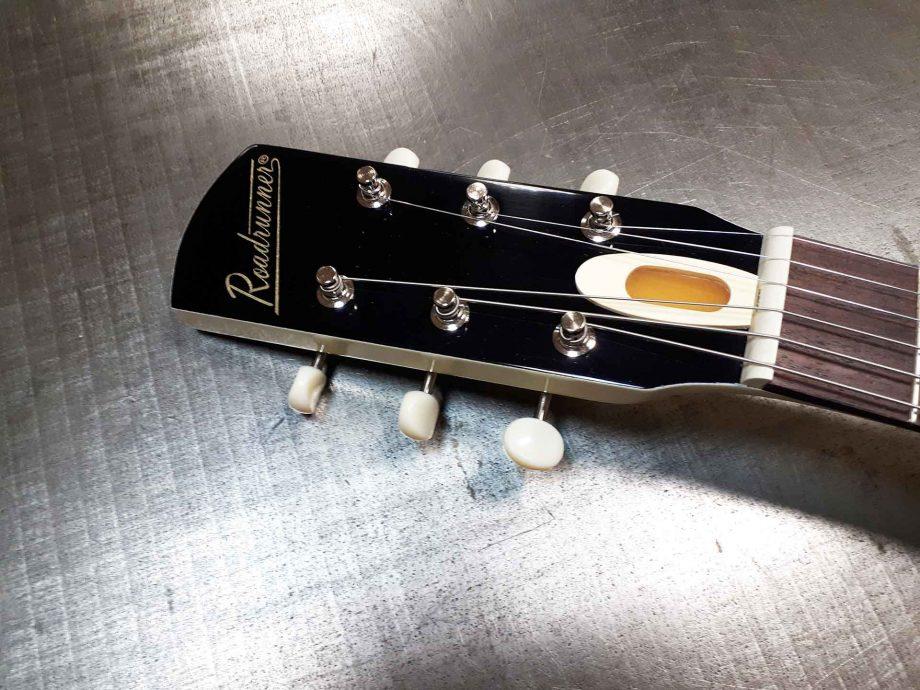 Roadrunner Guitars Virus Custom model